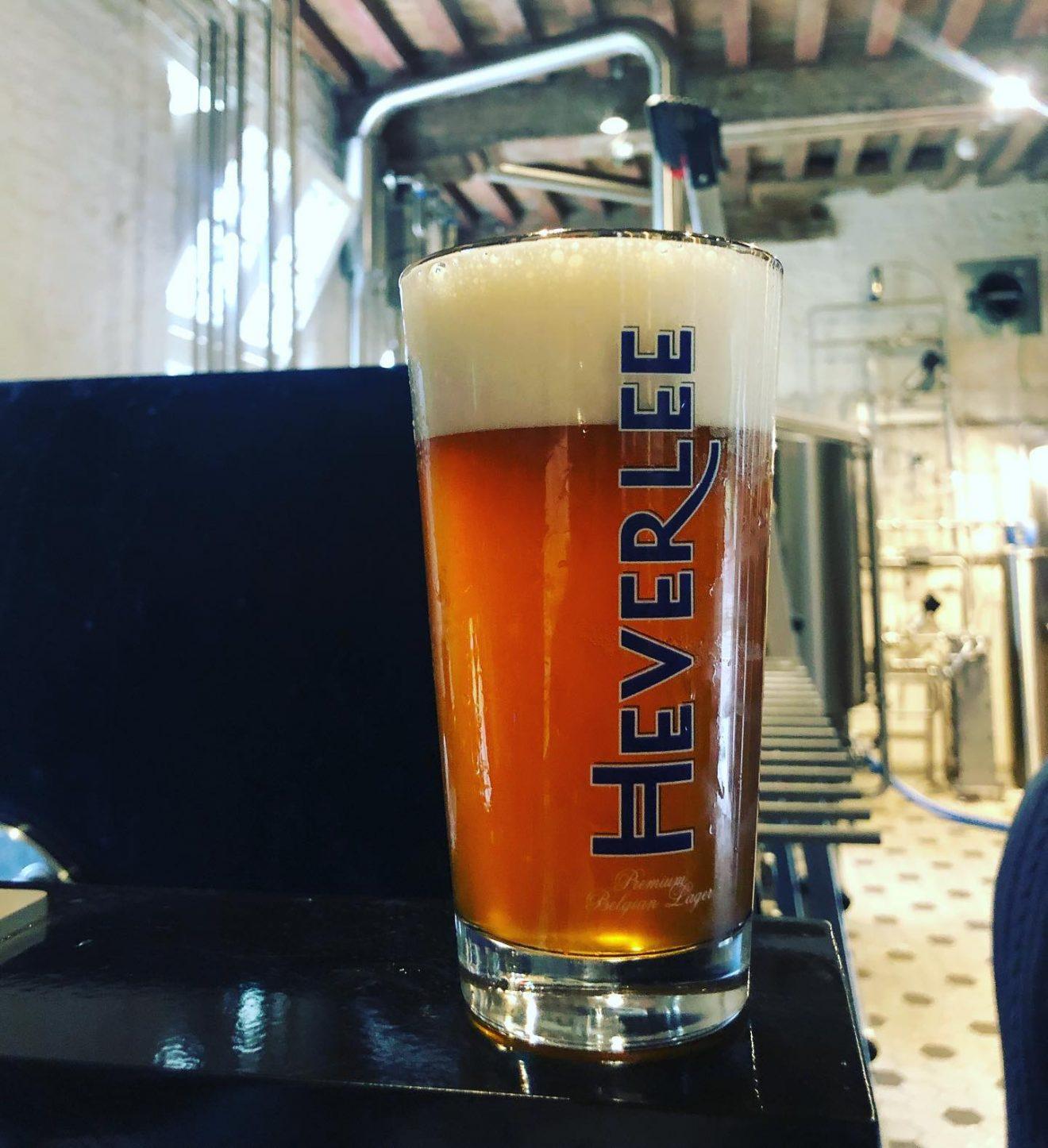 opening_braxatorium_beerglass